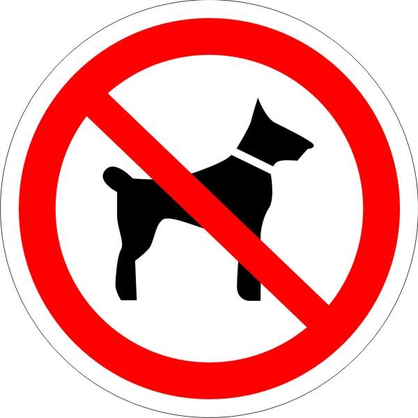 P 14. Запрещается вход (проход) с животными