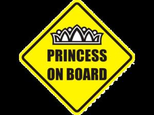 Наклейка Принцесса на борту купить в Интренет-магазине ColorChita.ru