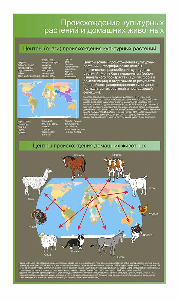 Стенд Происхождение культурных растений и домашних животных
