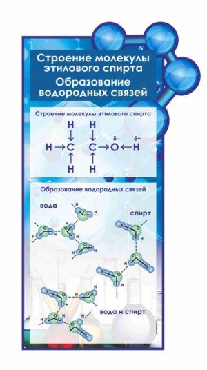 Стенд строение молекулы этилового спирта образование водородных связей макет